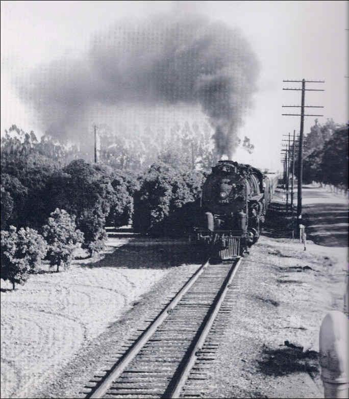 Somos primos san diegan northern bound steam locomotive through orange orchards fandeluxe Choice Image